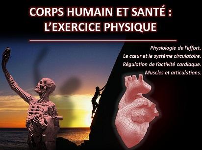 Corps humain et santé : l'exercice physique (N. Cohen)
